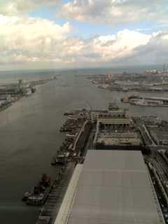 朱鷺メッセより、海に注ぐ信濃川